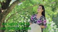 越南歌曲 Thương Chị Tôi我疼爱的姐姐-Dương Hồng Loan杨红鸾
