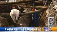 视频: 周家嘴路双阳路:一输水管爆裂 恢复尚需时间 新闻报道 20160131