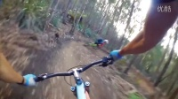 视频: Blue Derby Mountain Bike Trails, Tasmania