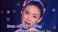 视频: 越南翻唱中文歌曲月亮代表我的心-- Loan Châu