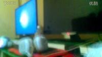 伍柳华爱奇艺高清乐视视频优酷网影视大全寻找爱的冒险电视剧电影•购票动漫综艺电视直播2016