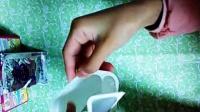 15:Candy 日本食玩 双色冰淇淋