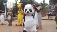 熊貓鋼管泰國鄉謠騷舞迅雷下載
