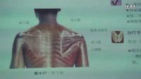 李建民-骨盆矫正压揉法之肩痛的诊断和治疗