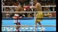 麦克莱伦vs.朱利安杰克逊一战 Gerald McClellan vs Julian Jackson, May 8, 1993
