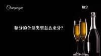 我们邀请来法国网红给你念香槟酒标 28