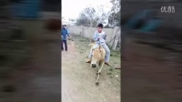 视频: 全优牛牛
