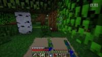 我的世界*Minecraft*筱峰的建筑向作死生存&第十六期&:千里归途