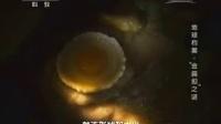 地球档案·