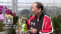 20160314珠江台摇钱树:家种鲜花、鲜切花,用绿夫人600度鲜花液保花艳、花期长