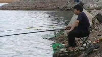 香油渣子和麦麸和在一起打窝钓鱼一般什么鱼爱吃