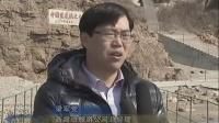 16.3.19荣成:黑尾鸥提前半月回归海驴岛-威海传媒网_播客_0