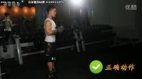 [手部]赛普教学视频第一期:肱二头肌训练之站姿