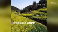 韩国:赌场济州岛春季樱花节油菜花盛开旅游的季节小七