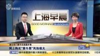 """迪士尼门票今天凌晨开售:网上购买""""黄牛票""""风险极大 上海早晨 160328"""