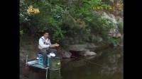 钓鱼视频水库野钓鲫鱼3d野外真实垂钓下载