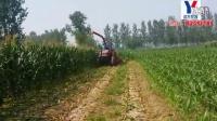 玉米秸秆收割机、青储机机现场作业视频