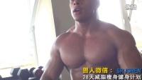 WWE冠军之夜肌肉男健美训练 男人怎么练腹肌锻炼腹肌最好的方法 锻炼手臂 助力肌肉围度打造