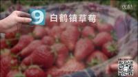 上海区域特产(上) 160405