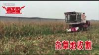 喜盈盈玉米割台-杂草地收割  半喂入玉米割台创始者