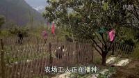 视频: 广元市QQ农场