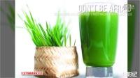 视频: 花红大麦若叶青汁 全国总代13798899111