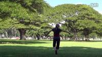 立华广场舞   一壶老酒  立华演绎编舞附教学   夏威夷