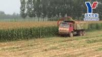 2016新款远大农牧玉米秸秆收割机、青贮机现场作业视频带籽粒破碎
