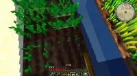 新风Minecraft《我的世界》『模组大杂烩系列之农业』P5