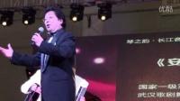 2016年4月23日武汉国博国际乐器展长江音乐节文艺演出手风琴伴奏李斌