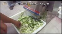 CHD20小型切菜机 切葱机 切葱花机视频