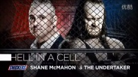 WWE最新经常赛事2016年4月30日wwe布洛克vs送葬者