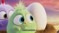 《愤怒的小鸟》母亲节特辑 鸟宝宝感恩妈妈胖红惊喜现身彩蛋