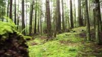 视频: 山地车骑行:一直在路上[开眼Eyepetizer-160503期]