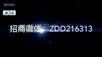 视频: 乙乐磁疗热帖全国官方总代:zdd216313