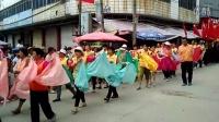 广西玉林市成均镇太子游、浴佛节