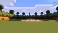 SKATEBOARD FACE (Minecraft Lucky Block PVP) w Sk