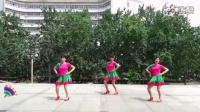 2016年最新广场舞【欢喜就好】姐妹版 制作:永不疲倦