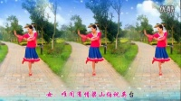 2016最新广场舞大全 万水千山总是爱 广场舞教学视频