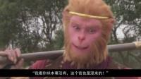 猴哥真的因为白骨精被撵的吗 04