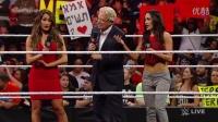 WWE 2女撕逼