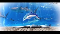 视频: 海立方海洋公园视频