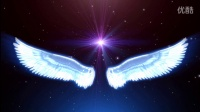 婚庆专用LED大屏幕视频素材----天使的翅膀 最美顶级LED素材 免费下载