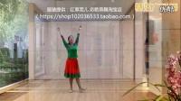 应子广场舞《梦见你的那一夜》含背面与分解教学._标清
