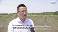九龙·农创小镇《大连新闻》6月16日播出