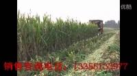 小麦收割机改装玉米收割机作业视频,直接收玉米粒