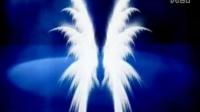 翅膀视频素材LED屏幕模板下载---李小萌