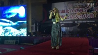 Olena Kucher Tian Mimi live cover