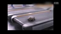 100倍速逆天了!把小乌龟放在跑步机上