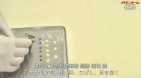 【中字】巧克力泡芙——小小的企鹅酱@阿尔法小分队日翻组